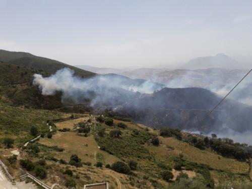 Incendio 2016